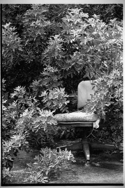 Chairs of Gemini No. 3